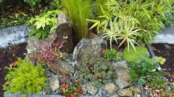jardin miniature naturel