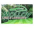 Molloy Lawn & Landscape's profile photo