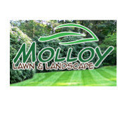 Molloy Lawn & Landscape's photo