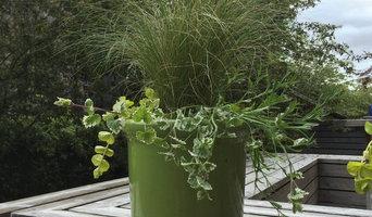 Decorative Planting