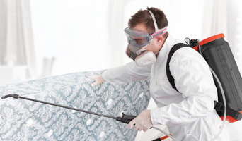 Pest Control Portsmouth
