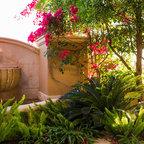 Scottsdale Landscape Design Backyard Renovation Myers