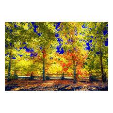 "The Last Orange Grove, Canvas Giclee, 32""x16"""