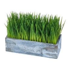 Rectangle Urban Pot wWth Wheat Grass