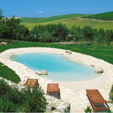 Biodesign Beach Sculpted Swimming Pools