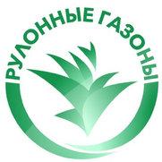 """Фото пользователя ООО """"Компания """"Рулонные газоны"""""""