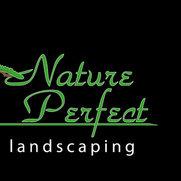 Nature Perfect Landscape and Design's photo