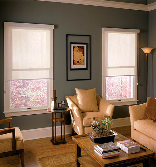 Remote Control And Motorized Window Treatments