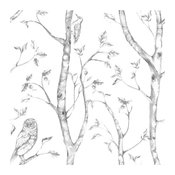 Birds, the Woods NU Peel and Stick Wallpaper, Yard