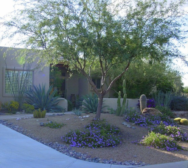 Desert Designs Front Yard: Grow A Beautiful Garden In Alkaline Soil