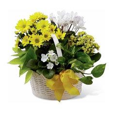 - Basket of flowers delivery patna - Christmas Decoration Storage