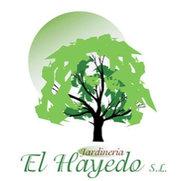 Foto de Jardinería El Hayedo S.L.