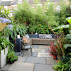 10 Reasons to Love a Tiny Garden