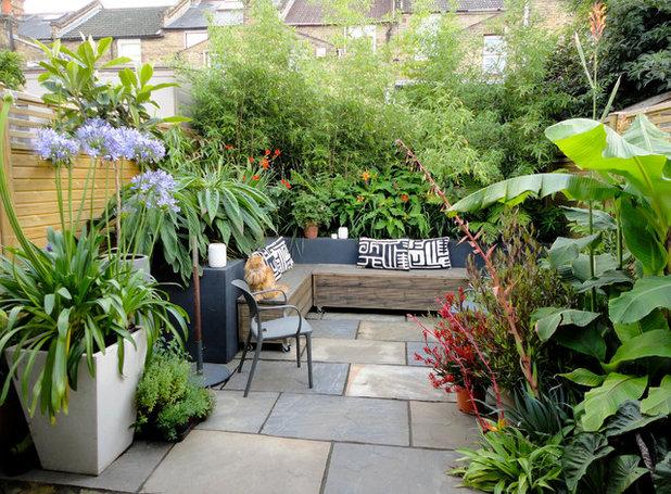 Modern  by antonia schofield garden design