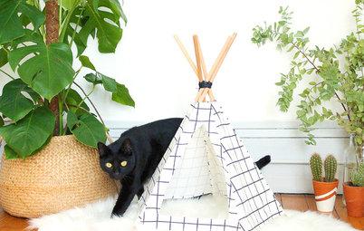 DIY : Fabriquez un tipi pour votre chat