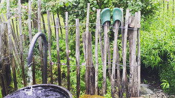 Ideen für den Garten