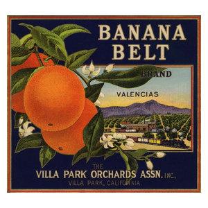 Canoga Park Los Angeles Rosita Orange Citrus Fruit Crate Label Vintage Art Print Advertising Collectibles