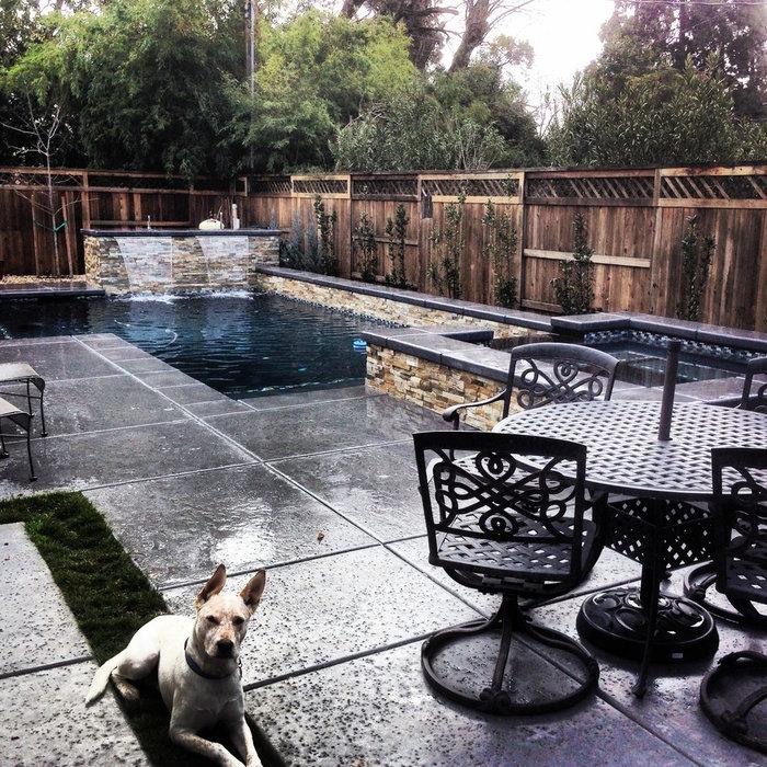 Contemporary pool/spa, Sacramento (Arden Park)