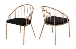 Marcia Modern Velvet Dining Chair With Stainless Steel Frame, Set of 2, Black/Ro