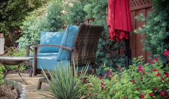 Backyard Circulation and Color