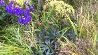 Dulwich Garden