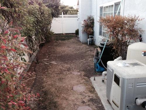 Help! Narrow side yard landscape ideas needed! on Narrow Side Yard Landscaping id=74347