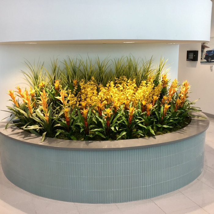 Synthetic Plants - Installed Projects