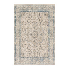 Surya Stonewashed Updated Traditional Taupe Bright Blue Area Rug 2 X3