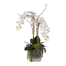Real Touch White Orchid and Succulent Arrangement
