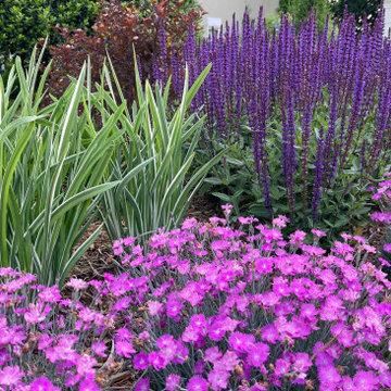 Lakeside Color Garden
