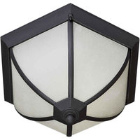 Two Light Outdoor Flush Black Frosted Seeded Glass