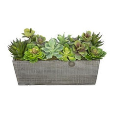 Artificial Succulent Garden in Grey-Washed Wood Ledge