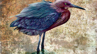 Bird Art: Patterned Egret - Birds of Light series