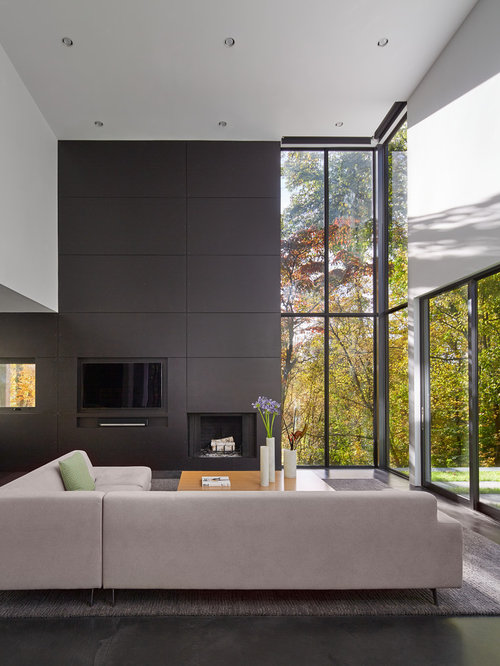 Trendy black floor living room photo in Minneapolis with gray walls  a standard fireplace and Top 30 Contemporary Living Room Ideas Designs Houzz
