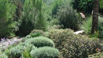 The Mediterranean Garden