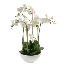 Pad Lifestyle White Orchids in Bowl