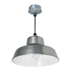 """Indoor Outdoor 1-Light 14"""" Silver Metal Hanging Reflector Light"""