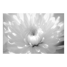 """Infrared Flower 2"" Nature Photography, Floral Unframed Wall Art Print, 24""x36"""