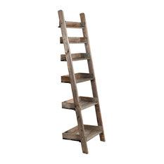 Aldsworth Shelf Ladder, Narrow