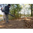 Perfect Gutter Cleaning, LLC's profile photo