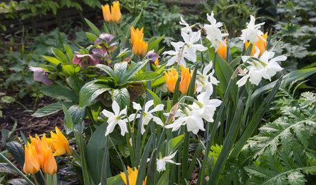 7 Garten-Ideen, die im April Freude machen