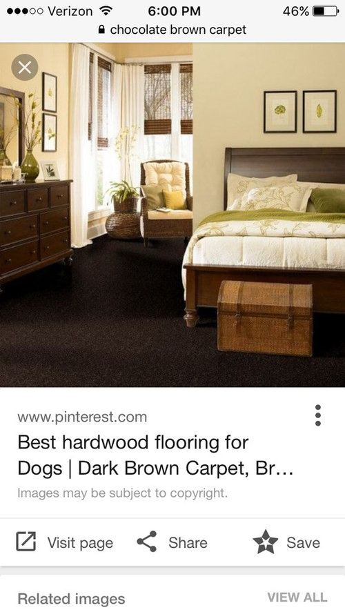 Chocolate Brown Carpet Yes Or No