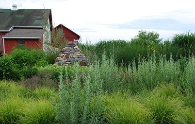 Problem Solving With the Pros: An Abundant Garden Stretches Its Means
