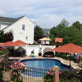 Dimassi and Sons Landscaping Inc.'s profile photo