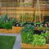 Experiments Aplenty Fill Vancouver Edible Garden