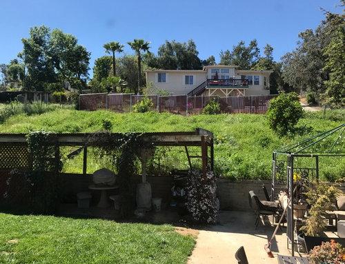 Help San Diego Backyard Slope Landscaping