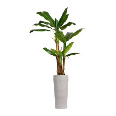 """81"""" Tall Banana Artificial Tree With Burlap Kit And FiberStone Planter"""