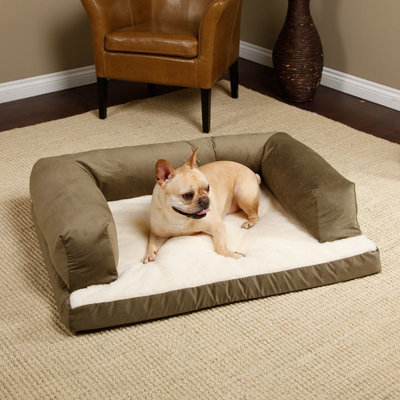 Guest Picks Wintertime Comforts For Your Pooch