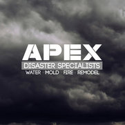 APEX Disaster Specialists's photo