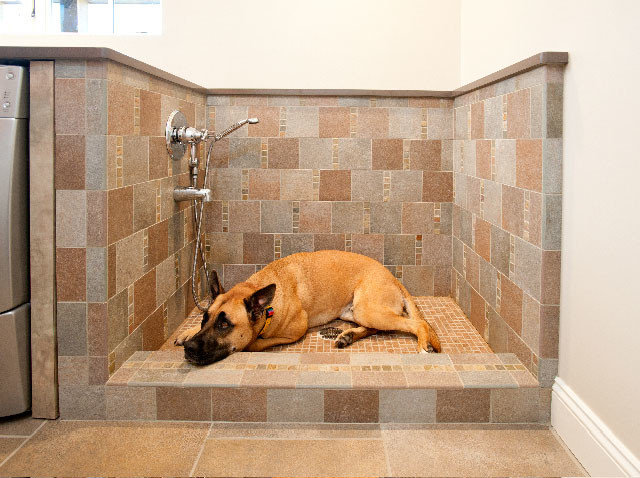 15 Doggone Good Tips For A Pet Washing Station